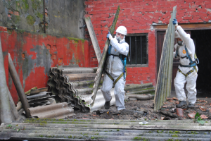 Types of Asbestos Removal Services for Businesses
